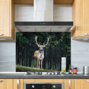 Deer Glass Splashback