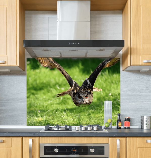 Owl Glass Splashback
